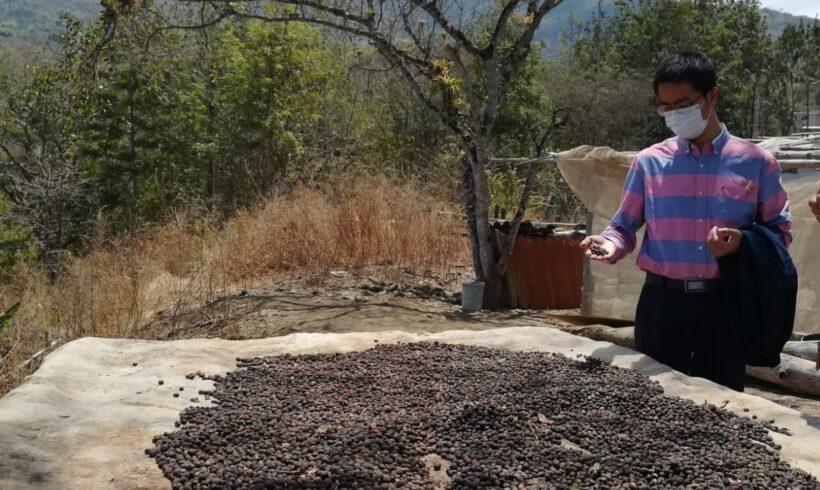 LALAQUIZ: MEJORAMIENTO Y CONSTRUCCIÓN DE CANALES DE RIEGO SON FUNDAMENTALES  PARA LA AGRICULTURA FAMILIAR